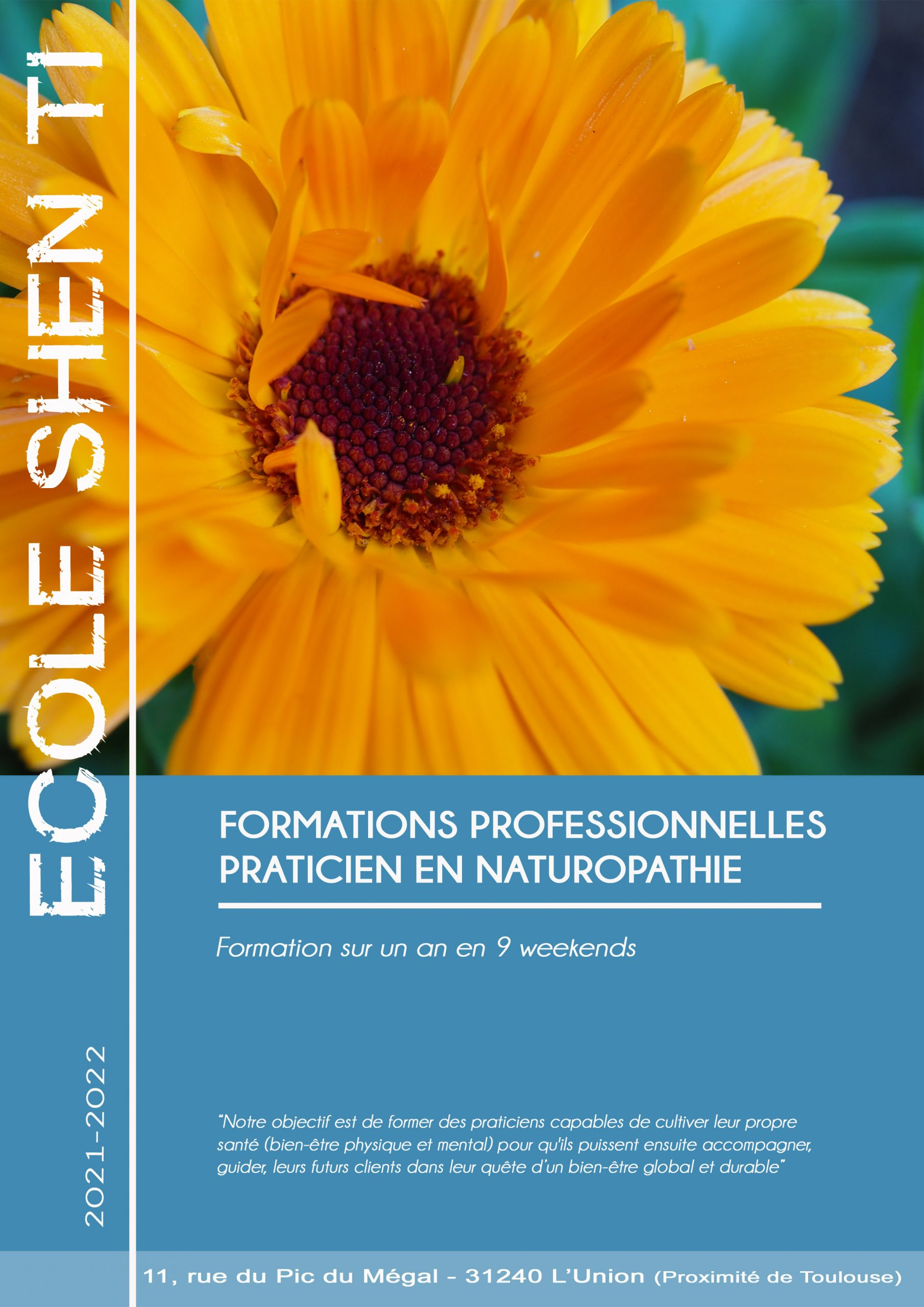 formation naturopathie toulouse