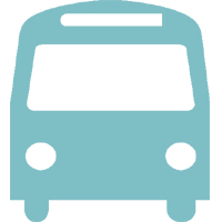 bus formation